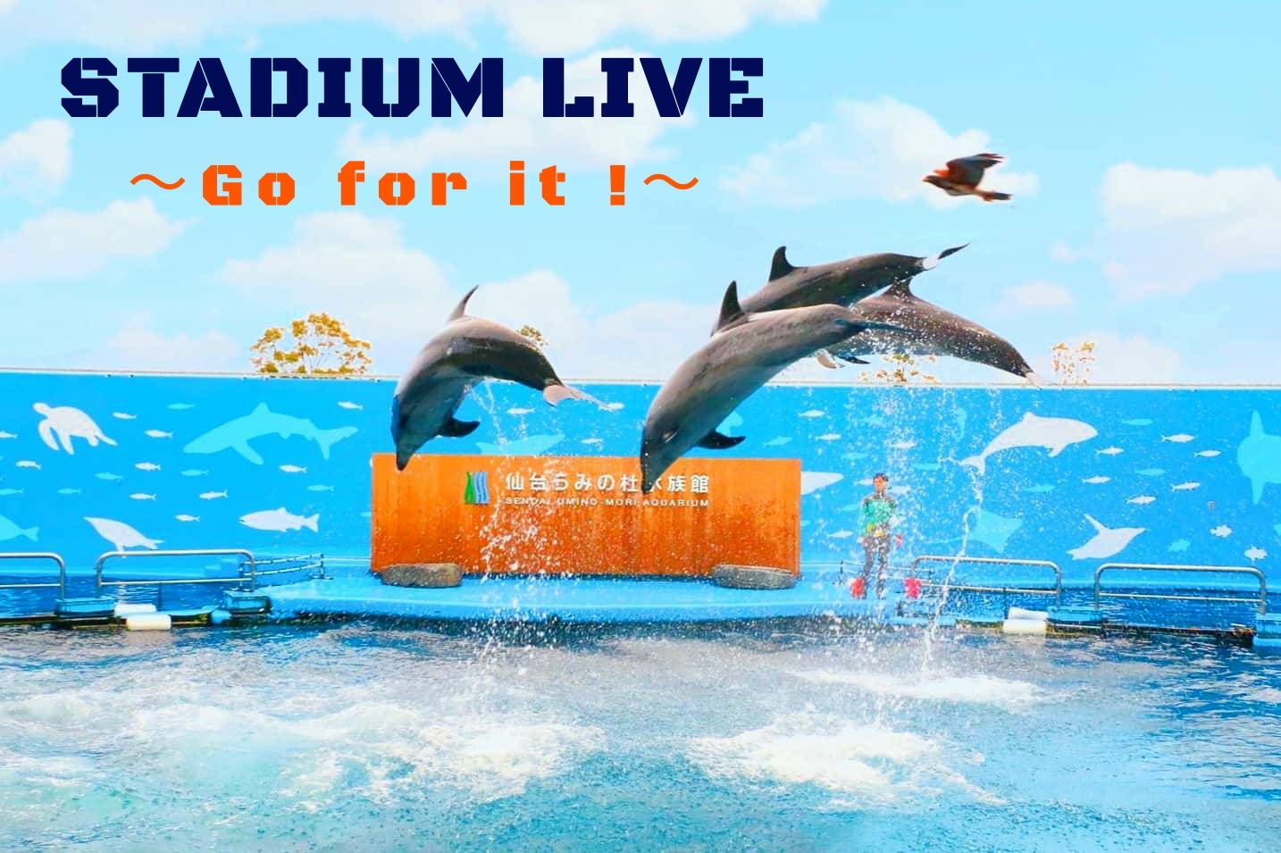 STADIUM LIVE ~Go for it !~